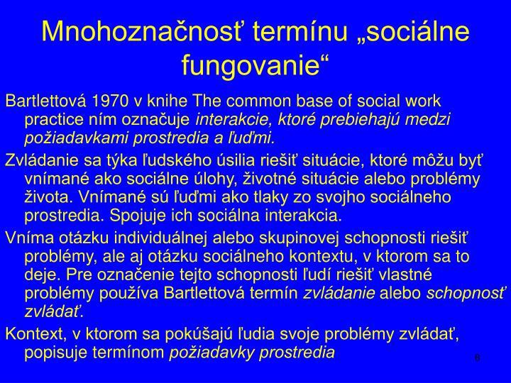 """Mnohoznačnosť termínu """"sociálne fungovanie"""""""