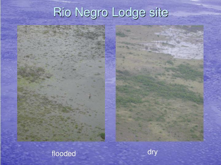 Rio Negro Lodge site