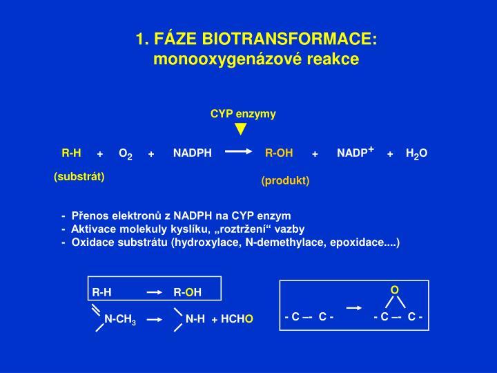 1. FÁZE BIOTRANSFORMACE: monooxygenázové reakce