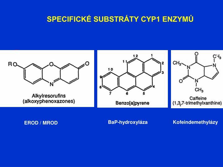 SPECIFICKÉ SUBSTRÁTY CYP1 ENZYMŮ
