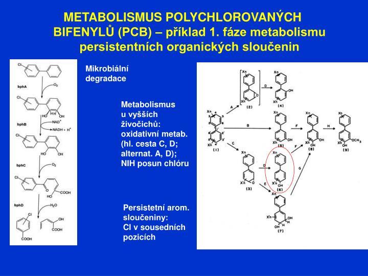 METABOLISMUS POLYCHLOROVANÝCH BIFENYLŮ (PCB) – příklad 1. fáze metabolismu persistentních organických sloučenin