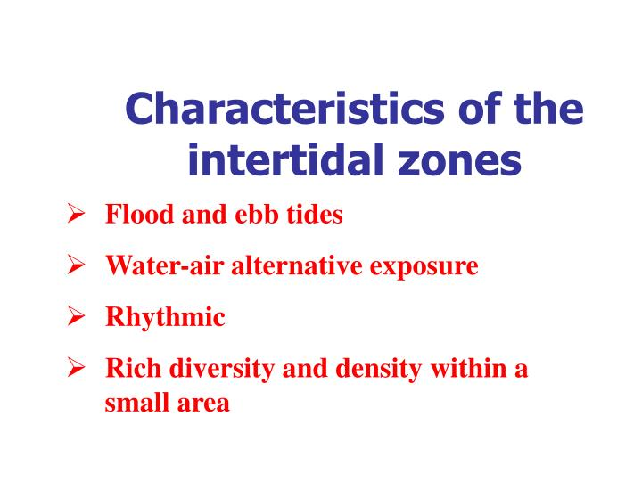 Characteristics of the intertidal zones