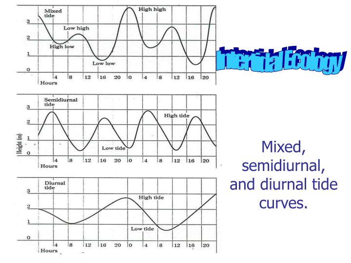 Mixed, semidiurnal, and diurnal tide curves.