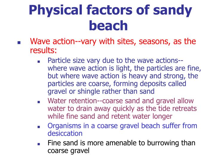 Physical factors of sandy beach