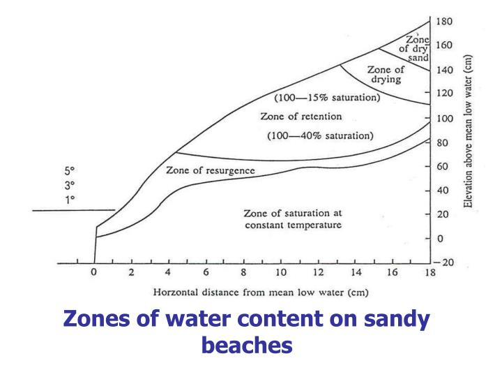 Zones of water content on sandy beaches