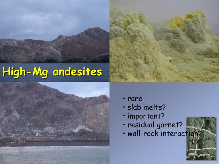 High-Mg andesites