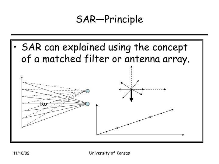 SAR—Principle