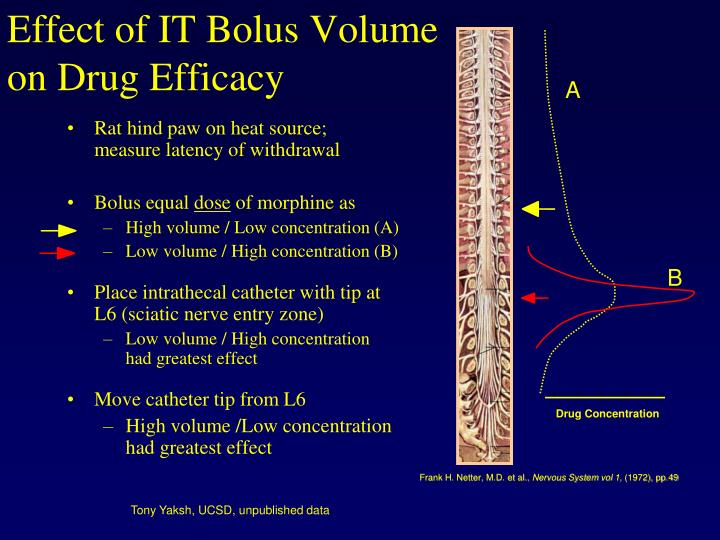 Effect of IT Bolus Volume