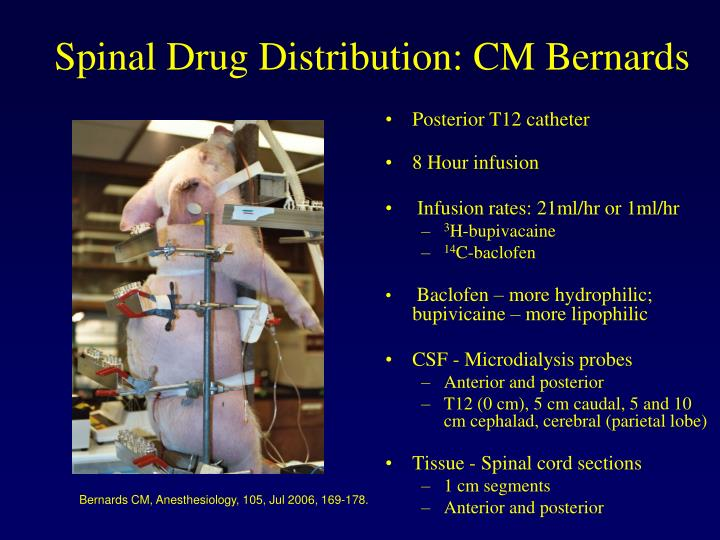 Spinal Drug Distribution: CM Bernards