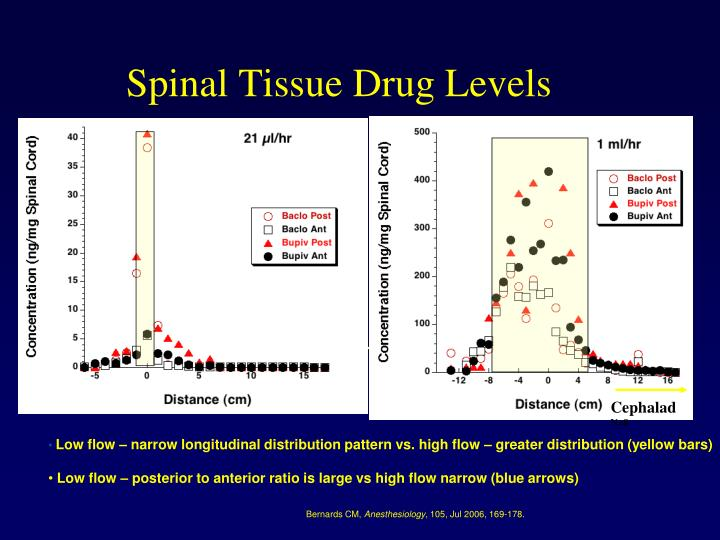 Spinal Tissue Drug Levels