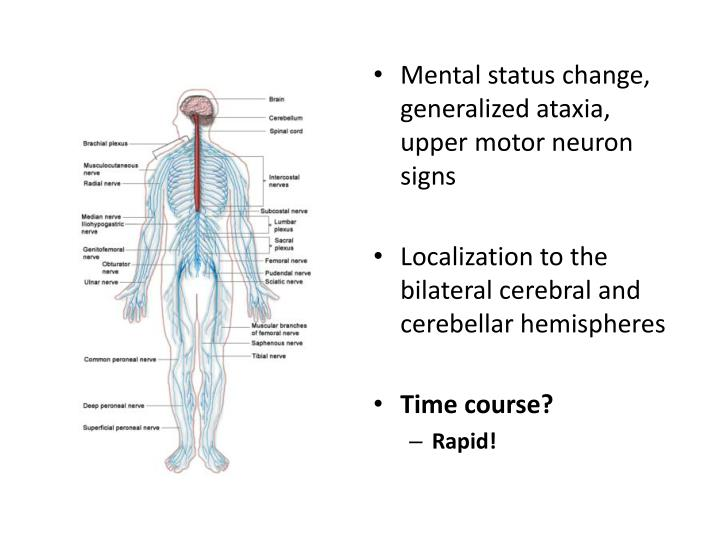 Ppt rapid dementia powerpoint presentation id 3365171 for Upper motor neuron syndrome symptoms