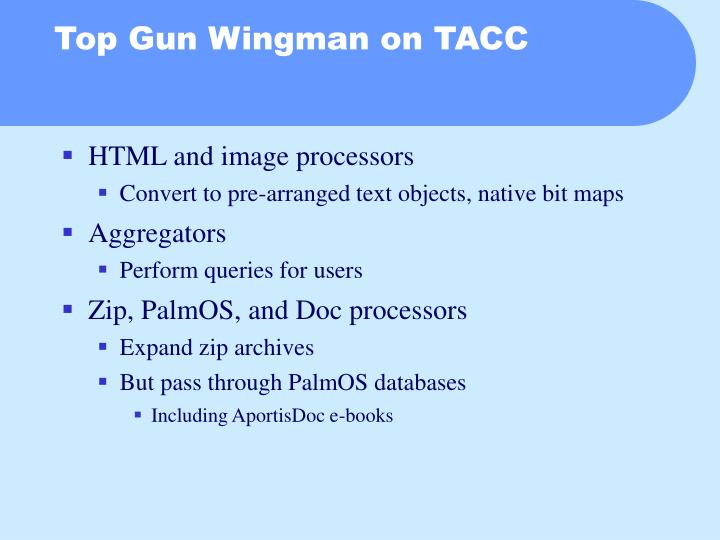 Top Gun Wingman on TACC