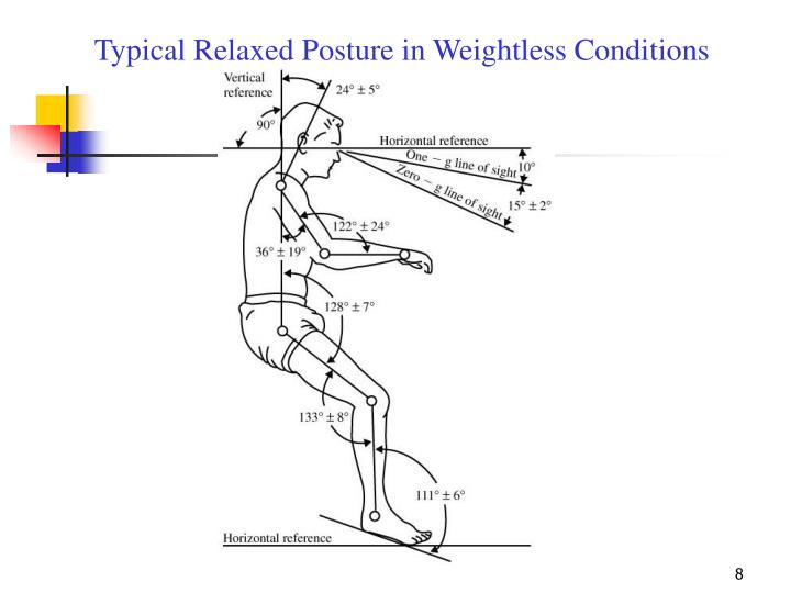 Typical Relaxed Posture in Weightless Conditions