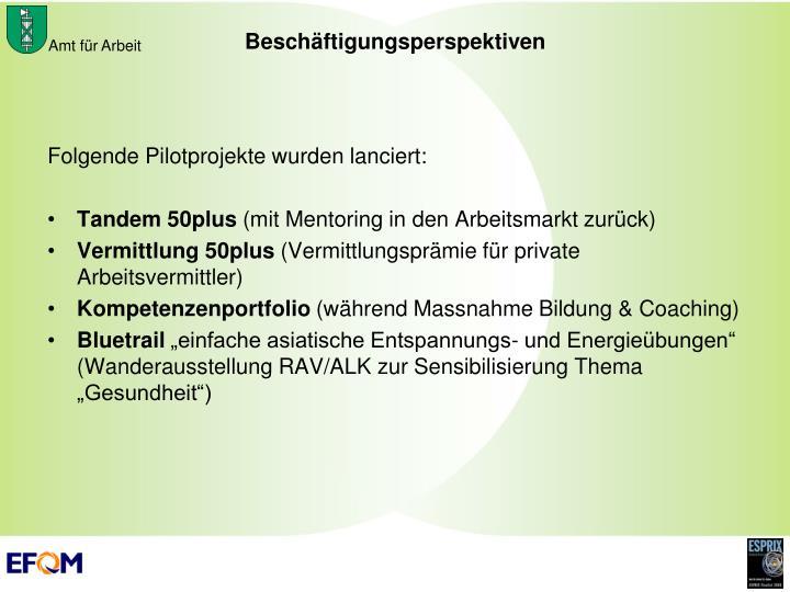 Folgende Pilotprojekte wurden lanciert: