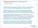 identification and assessment of credit exposures credit ratings