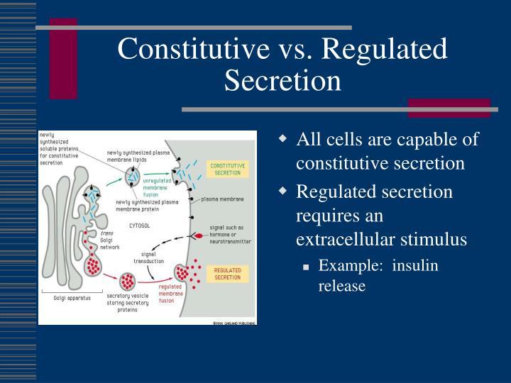 Constitutive vs. Regulated Secretion