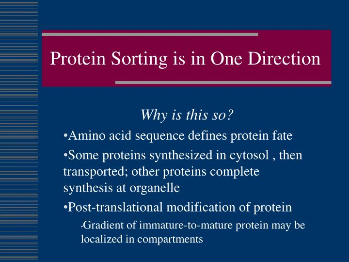 Protein Sorting is in One Direction