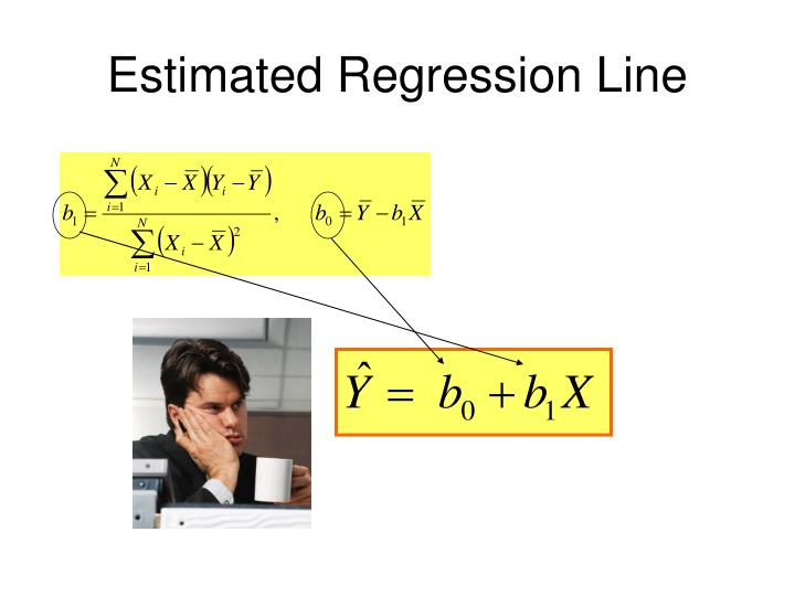 Estimated Regression Line