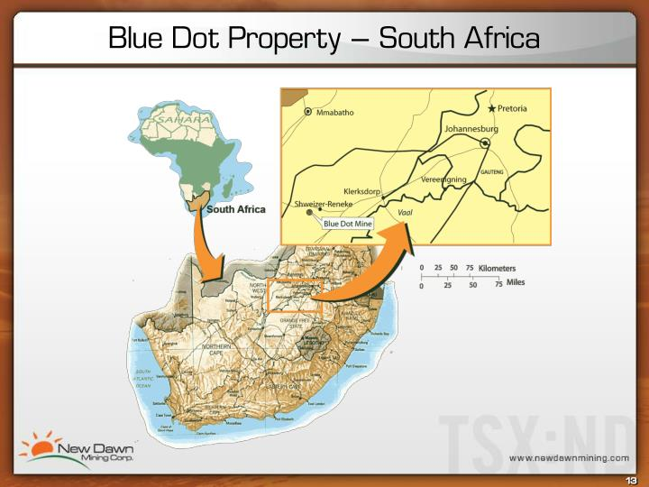 Blue Dot Property – South Africa