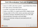 gold mineralization turk and angelus