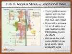 turk angelus mines longitudinal view