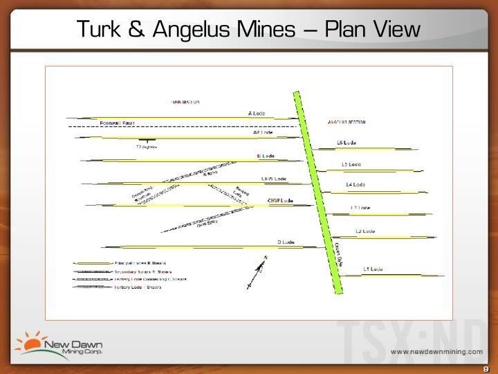 Turk & Angelus Mines – Plan View