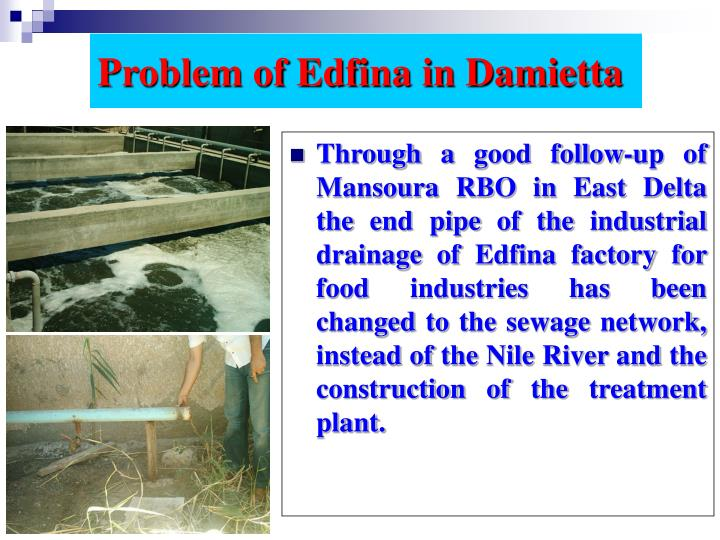 Problem of Edfina in Damietta