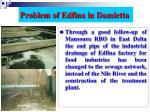 problem of edfina in damietta