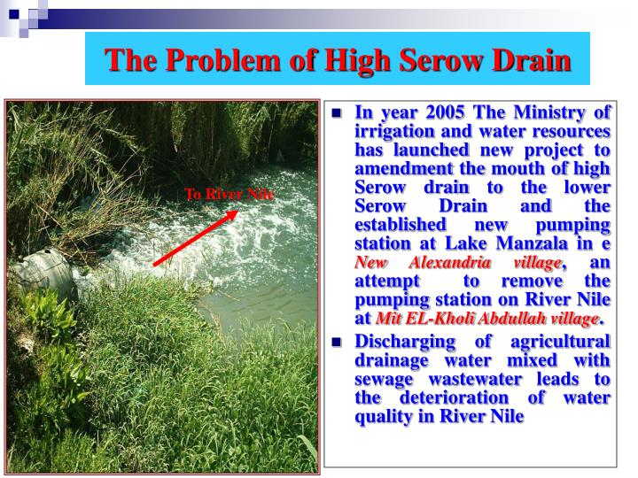 The Problem of High Serow Drain