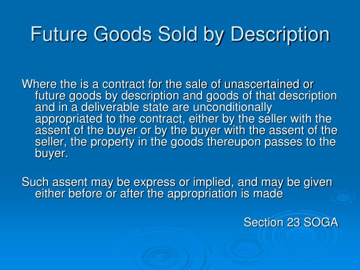 Future Goods Sold by Description