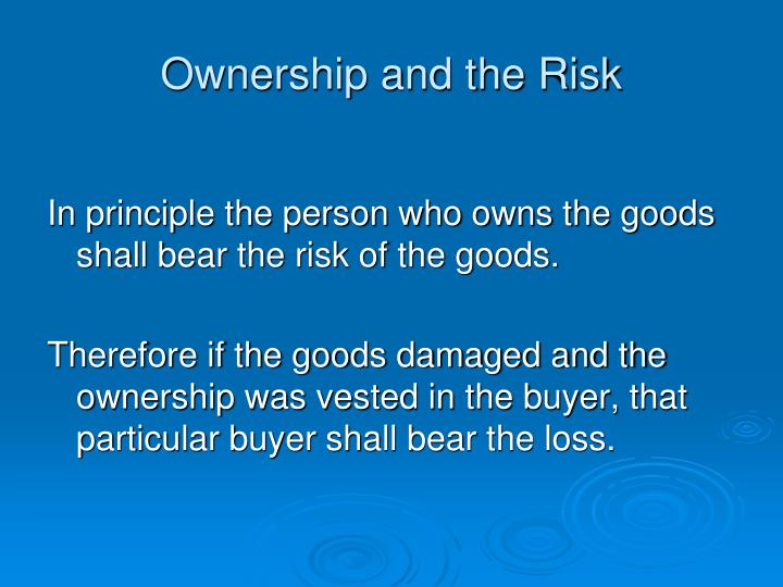 Ownership and the Risk