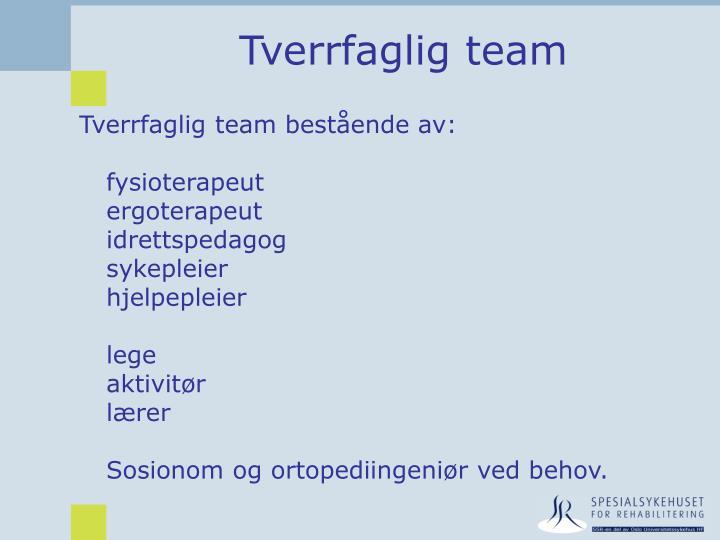 Tverrfaglig team