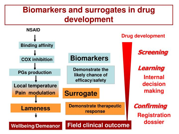 Biomarkers and surrogates in drug development