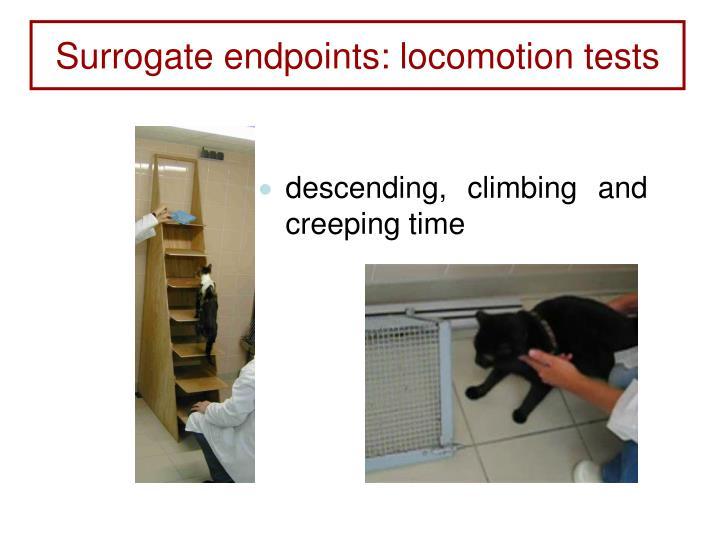Surrogate endpoints: locomotion tests
