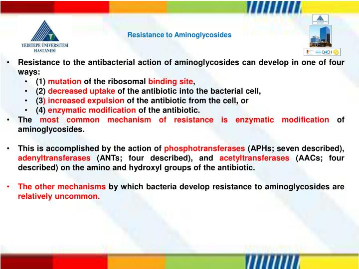 Resistance to Aminoglycosides
