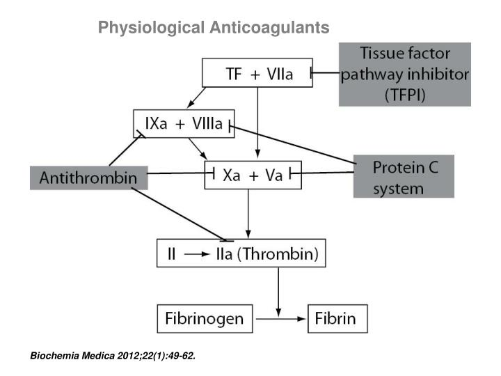 Physiological Anticoagulants