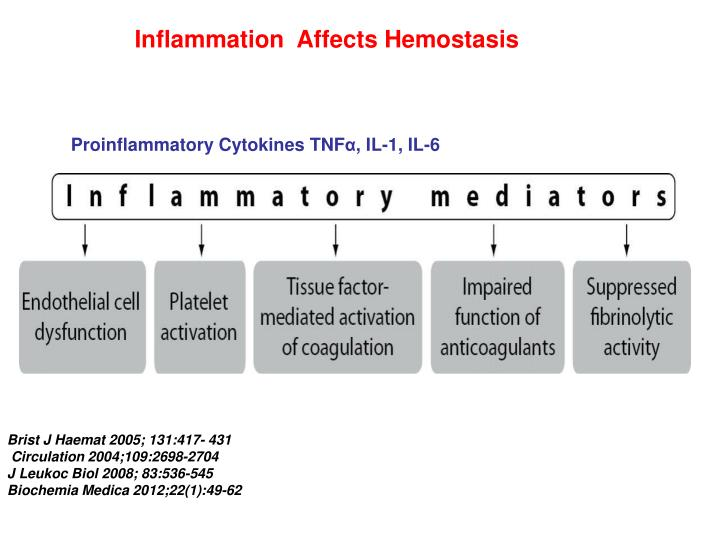 Inflammation  Affects Hemostasis