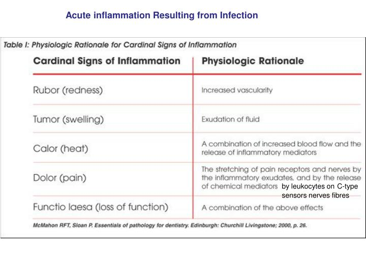 Acute inflammation Resulting from Infection