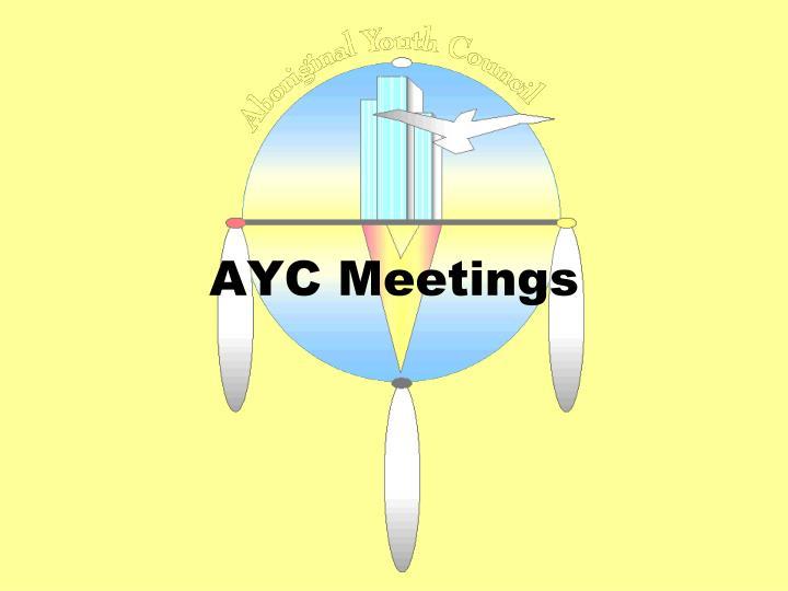 AYC Meetings