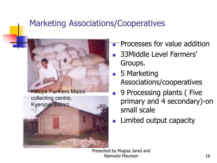 Marketing Associations/Cooperatives