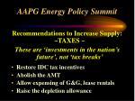 aapg energy policy summit