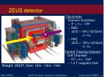 zeus detector