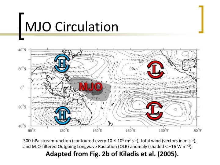 MJO Circulation