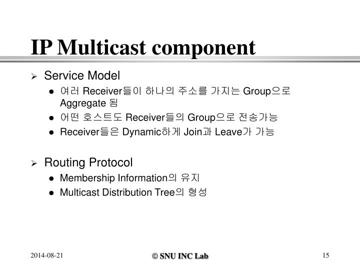 IP Multicast component