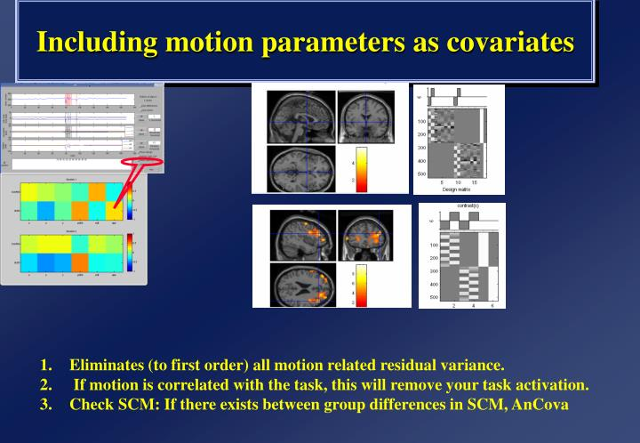 Including motion parameters as covariates