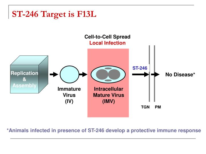 Cell-to-Cell Spread