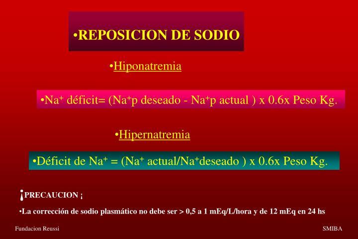 REPOSICION DE SODIO