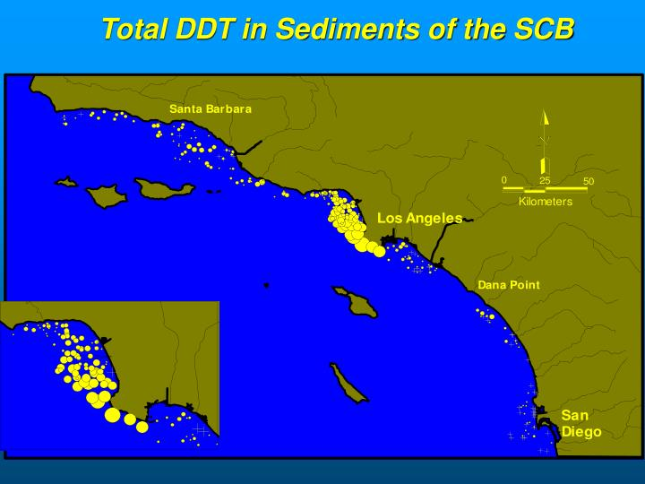 Total DDT in Sediments of the SCB
