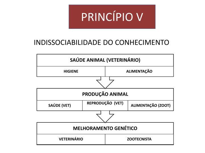 INDISSOCIABILIDADE DO CONHECIMENTO