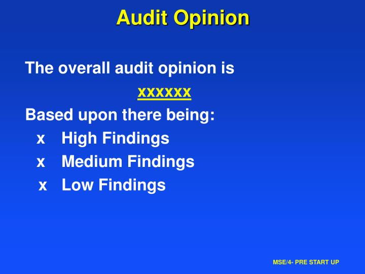 Audit Opinion